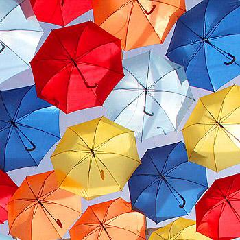 Зонты: оставайтесь сухими в любую погоду