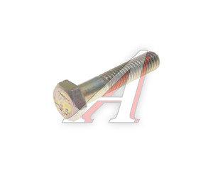 Болт М6х1.0х30 ВАЗ-2101 успокоителя цепи длинный ТТМ 10902821