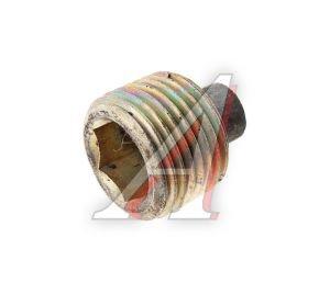 Пробка ГАЗ-2410, 31029 КПП и РЗМ магнитная (ОАО ГАЗ) 31029-1701098
