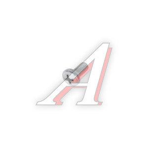 Винт М5х0.8х10 ВАЗ-2101 ручки двери внутренней 13273901