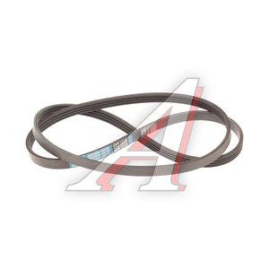 Ремень приводной поликлиновой 4PK1310 DODGE Neon DONGIL 4PK1310, 04668247AB