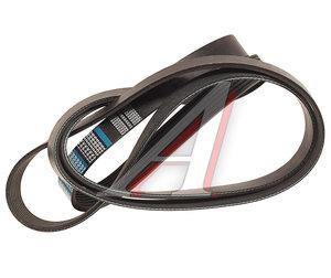 Ремень приводной поликлиновой 7PK2365 VW Touareg (04-) DONGIL 7PK2365, 077903137AB