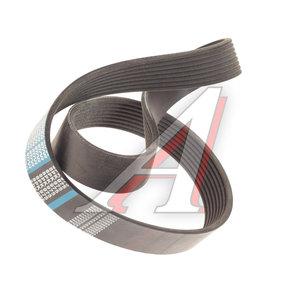 Ремень приводной поликлиновой 8PK975 DONGIL 8PK975