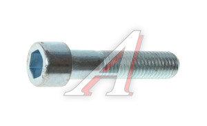Болт М12х1.75х55 внутренний шестигранник DIN912