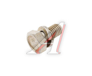 Болт М8х1.25х16 ВАЗ с пружинной шайбой кронштейна регулировки давления тормоза 13825621