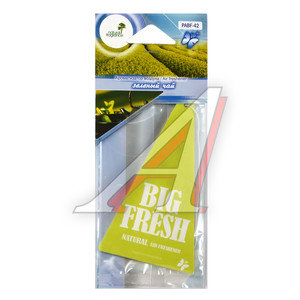 Ароматизатор подвесной пластина (чай зеленый) Big Fresh FKVJP PABF-42 \Big Fresh, PABF-42