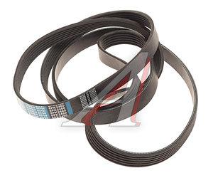 Ремень приводной поликлиновой 6PK2460 AUDI A4 (06-) (2.7/3.0 TDI) DONGIL 6PK2460, 059903137P